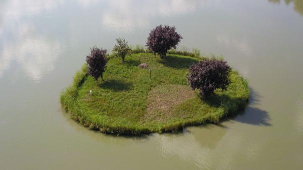 Orosi tó