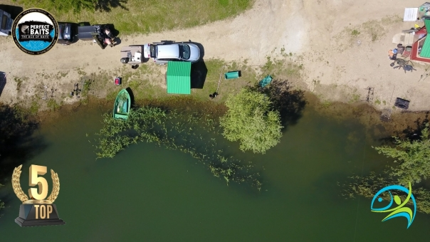 Horgászverseny - 2021.05.27-30 Top5 Bojlis Kupa - Koi II.